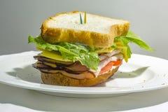 Κλείστε επάνω ενός σάντουιτς στην πλευρά σε επίπεδο ματιών με τις οδοντογλυφίδες Στοκ φωτογραφία με δικαίωμα ελεύθερης χρήσης