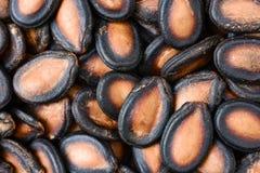 Κλείστε επάνω ενός σωρού των μαύρων σπόρων πεπονιών στοκ φωτογραφία