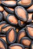 Κλείστε επάνω ενός σωρού των μαύρων σπόρων πεπονιών στοκ φωτογραφίες
