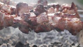 Κλείστε επάνω να περιστραφεί τα οβελίδια Κομμάτια κρέατος χοιρινού κρέατος που τηγανίζονται σε μια σχάρα Τηγάνισμα ψημένα στη σχά απόθεμα βίντεο