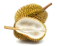 Κλείστε επάνω ξεφλουδισμένου durian Στοκ Φωτογραφίες