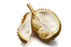 Κλείστε επάνω ξεφλουδισμένου durian Στοκ φωτογραφίες με δικαίωμα ελεύθερης χρήσης