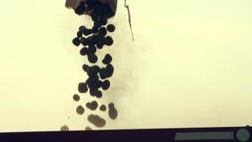 Κλείστε επάνω, οι σπόροι πατατών χύνονται στο πίσω μέρος του τρακτέρ, διαδικασία της μηχανοποιημένης μηχανής potatoe φυτεύοντας απόθεμα βίντεο