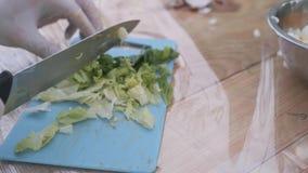 Κλείστε επάνω παραδίδει τα γάντια κόβοντας το μαρούλι για τη σαλάτα απόθεμα βίντεο