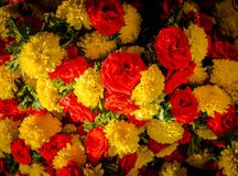 Κλείστε επάνω τα κίτρινα και κόκκινα λουλούδια στην αγορά KR στη Βαγκαλόρη Στη Βαγκαλόρη Στοκ Φωτογραφίες