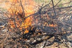 Κλείστε επάνω την άποψη ενός κοκκίνου - καυτή πυρκαγιά κατωφλιών στοκ φωτογραφίες
