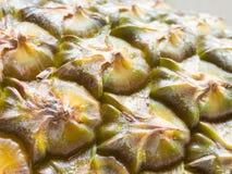 Κλείστε επάνω την άποψη της φλούδας ανανά με το φυτοφάρμακο στοκ εικόνες