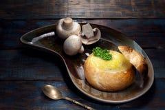 Κλείστε επάνω την άποψη του συμπαθητικού yummy γεύματος στην πλάτη χρώματος Στοκ Φωτογραφίες