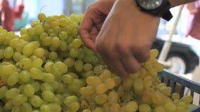 Κλείστε επάνω την άποψη των χεριών νεαρών άνδρων επιλέγοντας τα σταφύλια στην αγορά φρούτων φιλμ μικρού μήκους