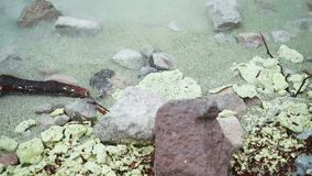 Κλείστε επάνω την ακτή λιμνών θείου φιλμ μικρού μήκους