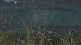 Κλείστε επάνω την πράσινη χλόη και την μπλε εποχή πτώσης φθινοπώρου υποβάθρου λιμνών απόθεμα βίντεο
