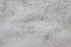 Κλείστε επάνω της άσπρης σύστασης γουνών Άσπρος τάπητας μαλλιού Στοκ Φωτογραφίες