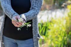 Κλείστε επάνω της γυναίκας που κρατά τα άσπρα wildflowers στα χέρια στοκ εικόνα με δικαίωμα ελεύθερης χρήσης
