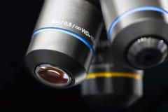Κλείστε επάνω της εξέτασης του δείγματος δοκιμής κάτω από το μικροσκόπιο στο εργαστήριο Στοκ Εικόνες