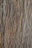Κλείστε επάνω της καφετιάς ξύλινης σύστασης Στοκ Φωτογραφία