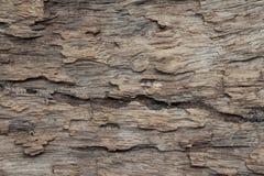 Κλείστε επάνω της καφετιάς ξύλινης σύστασης Στοκ Εικόνες