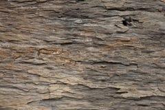 Κλείστε επάνω της καφετιάς ξύλινης σύστασης Στοκ εικόνες με δικαίωμα ελεύθερης χρήσης