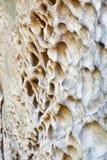 Κλείστε επάνω τις τρύπες διάβρωσης του βράχου ψαμμίτη Στοκ εικόνες με δικαίωμα ελεύθερης χρήσης