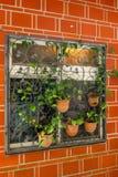 Κλείστε επάνω τον όμορφο πορτοκαλή τουβλότοιχο με flowerpot Στοκ φωτογραφίες με δικαίωμα ελεύθερης χρήσης
