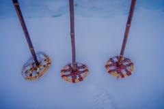 Κλείστε επάνω του ζωηρόχρωμου ζευγαριού των πόλων σκι και πεζοπορίας πέρα από το χιόνι στη Νορβηγία Στοκ Φωτογραφία