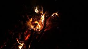 Κλείστε επάνω του καυτού καίγοντας ξύλινου άνθρακα πυρκαγιάς φιλμ μικρού μήκους