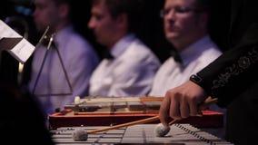 Κλείστε επάνω του μουσικού που παίζει στο xylophone Xylophone, μουσική και χρωματική έννοια οργάνων - κινηματογράφηση σε πρώτο πλ απόθεμα βίντεο