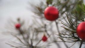 Κλείστε επάνω του μπιχλιμπιδιού δέντρων πεύκων Χριστουγέννων στο υπόβαθρο χιονιού απόθεμα βίντεο