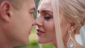 Κλείστε επάνω του νεόνυμφου και της νύφης Όμορφο γαμήλιο ζεύγος στο πάρκο Μοντέρνα newlyweds απόθεμα βίντεο