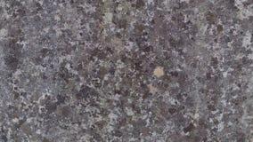 Κλείστε επάνω του πορφυρού τοίχου πετρών στοκ εικόνες