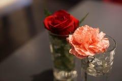 Κλείστε επάνω του ρόδινου λουλουδιού γαρίφαλων και ένα κόκκινο αυξήθηκε στοκ φωτογραφία με δικαίωμα ελεύθερης χρήσης