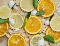 Κλείστε επάνω του φρέσκου πορτοκαλιού καλοκαιριού πάγου κύβων φύλλων κοχυλιών θάλασσας λεμονιών Στοκ Εικόνες