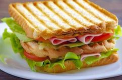 Κλείστε επάνω του φρέσκου σάντουιτς με το ζαμπόν, μπέϊκον, ντομάτες στοκ φωτογραφίες με δικαίωμα ελεύθερης χρήσης