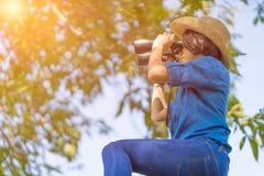 Κλείστε επάνω το καπέλο και τη λαβή ένδυσης γυναικών διοφθαλμικά στον τομέα χλόης Στοκ φωτογραφία με δικαίωμα ελεύθερης χρήσης