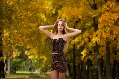 Πορτρέτο της όμορφης νέας γυναίκας στο φόρεμα στοκ φωτογραφία με δικαίωμα ελεύθερης χρήσης
