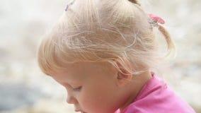 Κλείστε επάνω το πορτρέτο του καλού κοριτσάκι με τις χαριτωμένες τρίχες που σκέφτεται επάνω από τη κάμερα απόθεμα βίντεο