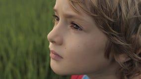 Κλείστε επάνω το πορτρέτο του χαμογελώντας παιδιού που εξετάζει τον ουρανό στη θερινή ημέρα φιλμ μικρού μήκους