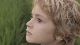 Κλείστε επάνω το πορτρέτο του χαμογελώντας παιδιού που εξετάζει τον ουρανό στη θερινή ημέρα απόθεμα βίντεο