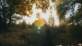 Κλείστε επάνω το χέρι της γυναίκας που κρατά το κίτρινο φύλλο σφενδάμου στο υπόβαθρο ηλιοβασιλέματος Ο φωτεινός ήλιος φωτίζει το  φιλμ μικρού μήκους