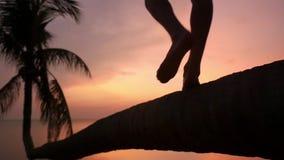 Κλείστε επάνω των αρσενικών ποδιών περπατά σε έναν φοίνικα στην τροπική παραλία κατά τη διάρκεια του όμορφου ηλιοβασιλέματος παγω απόθεμα βίντεο