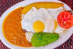Κλείστε επάνω των εύγευστων του Εκουαδόρ τροφίμων, ρύζι, αυγά, pplantains, ντομάτα αβοκάντο που εξυπηρετείται σε ένα άσπρο πιάτο  Στοκ Φωτογραφία
