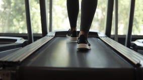 Κλείστε επάνω των θηλυκών ποδιών στα μαύρα πάνινα παπούτσια Κορίτσι ικανότητας που περπατά treadmill διαδρομής Γυναίκα με τη μυϊκ απόθεμα βίντεο