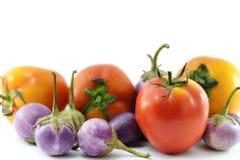 Κλείστε επάνω των ντοματών στην πράσινη και κόκκινη έκδοση και πορφυρό eggplan Στοκ Εικόνα