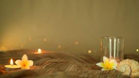 Κλείστε επάνω των τροπικών λουλουδιών για το εγχώριο ντεκόρ Η ζωή Slill, κερί ανάβει και λουλούδια frangipani plumeria σε ένα μαλ απόθεμα βίντεο