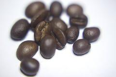 Φασόλια καφέ που απομονώνονται στο άσπρο υπόβαθρο στοκ φωτογραφίες