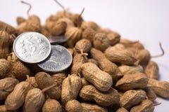 Κλείστε επάνω των φυστικιών ή των αραχίδων με τα ινδικά νομίσματα στο απομονωμένο υπόβαθρο στοκ εικόνα