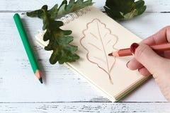 Κλείστε επάνω των χεριών σύροντας ένα φύλλο πτώσης που καλύπτεται με το φθινόπωρο LE Στοκ φωτογραφίες με δικαίωμα ελεύθερης χρήσης
