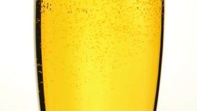 Κλείστε την επάνω χύνοντας μπύρα με τις φυσαλίδες στο ποτήρι απόθεμα βίντεο