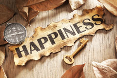 κλειδί ευτυχίας καθοδ Στοκ Εικόνα