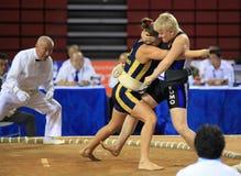 κλειστές γυναίκες sumo πια&si Στοκ Εικόνες