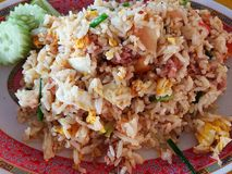 Κλειστό επάνω τηγανισμένο χοιρινό κρέας ρύζι Στοκ εικόνα με δικαίωμα ελεύθερης χρήσης